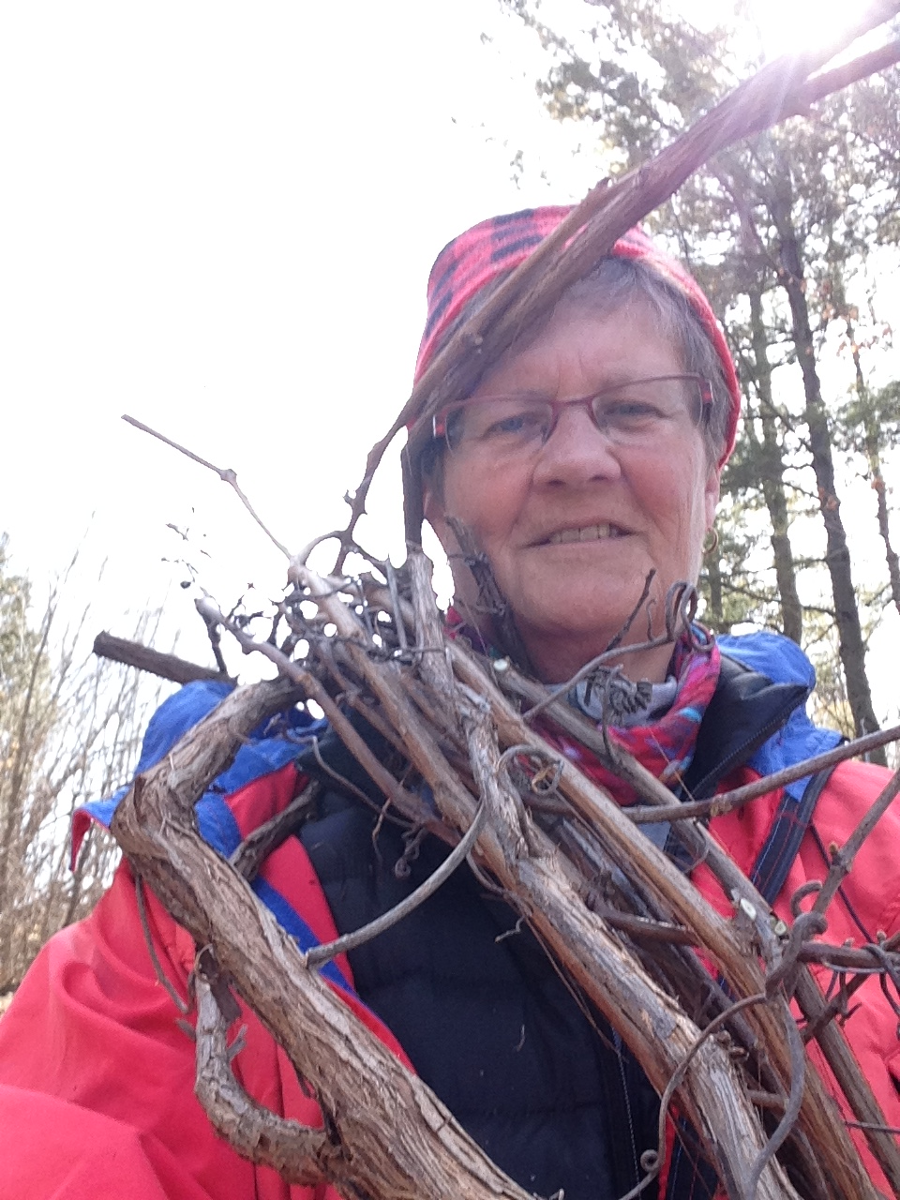 Sandi gathering grapevine for basket frames